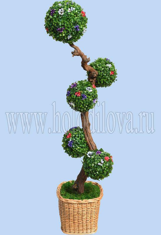 Самшитовое дерево