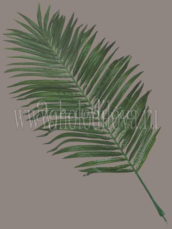 Лист пальмы своими руками